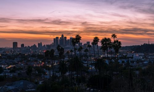 Los Angeles cityscape with trees at dawn